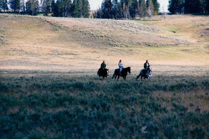 Yellowstone 2001 08
